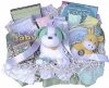 Preemie Welcome Gift Basket